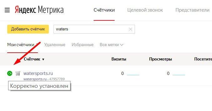 Счетчик Яндекс.Метрика корректно установлен